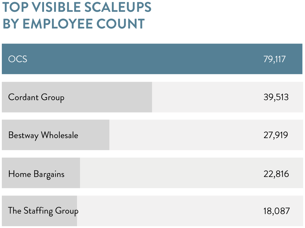 Top visible scaleups by employee count