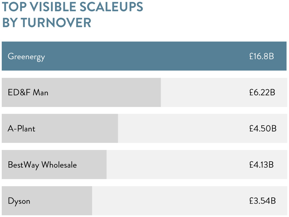 Top visible scaleups by turnover
