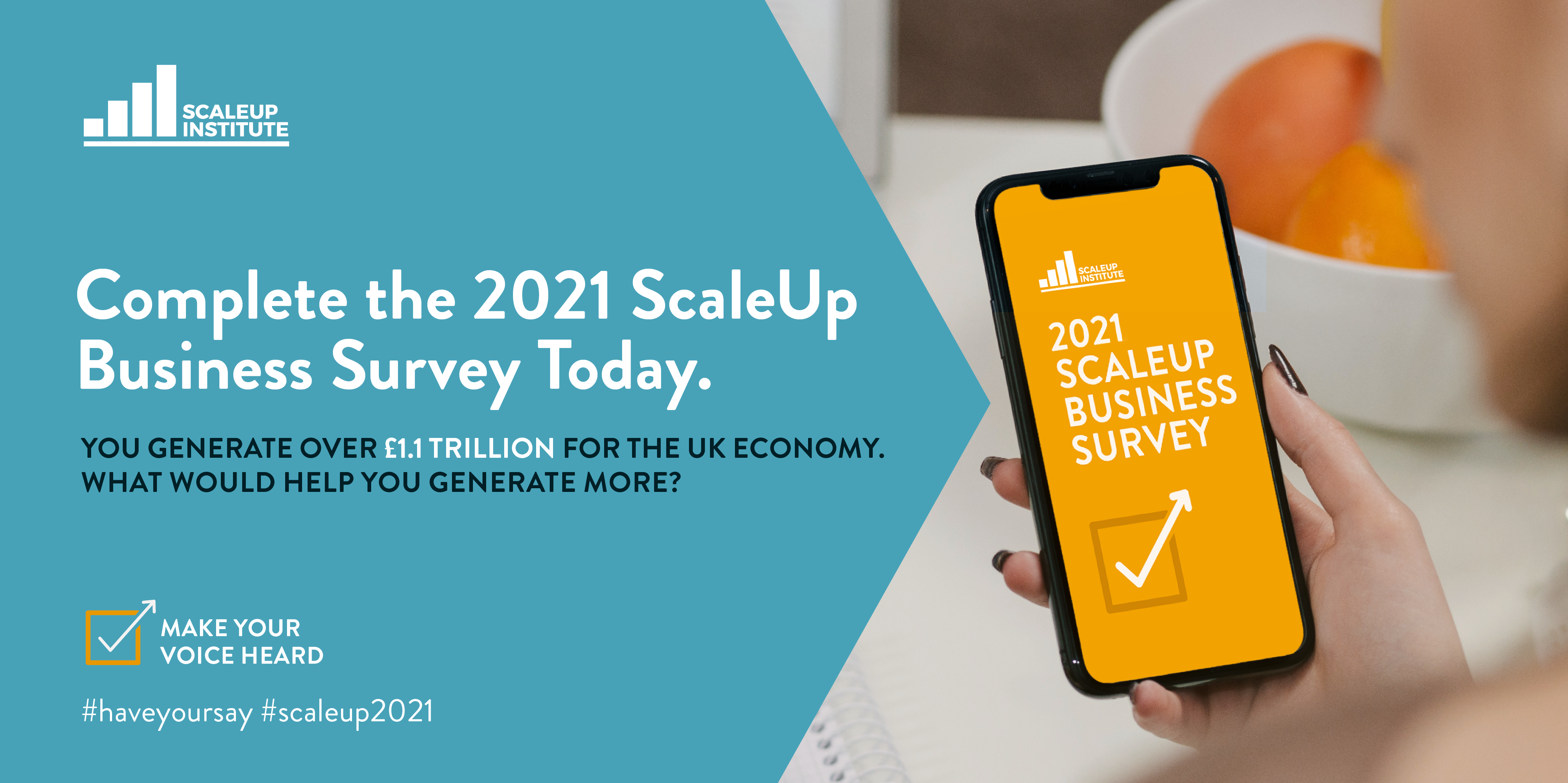 ScaleUp Survey